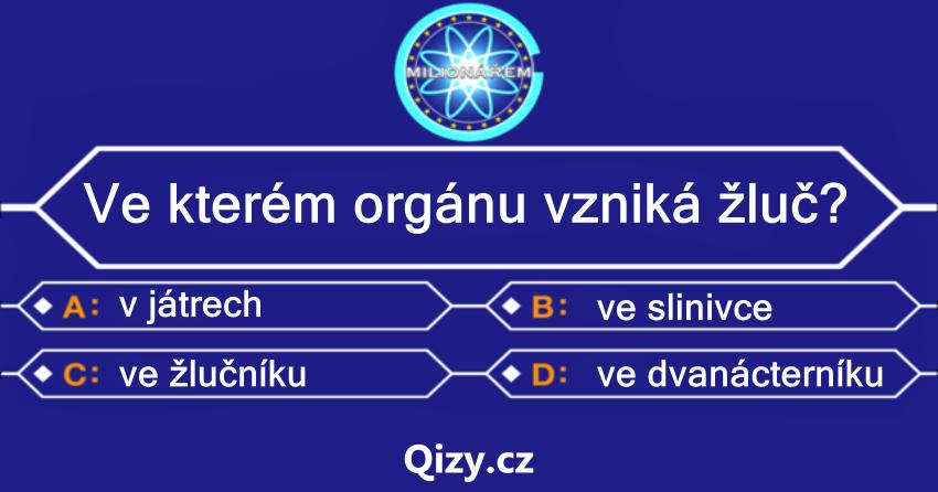 Ve kterém orgánu vzniká žluč?