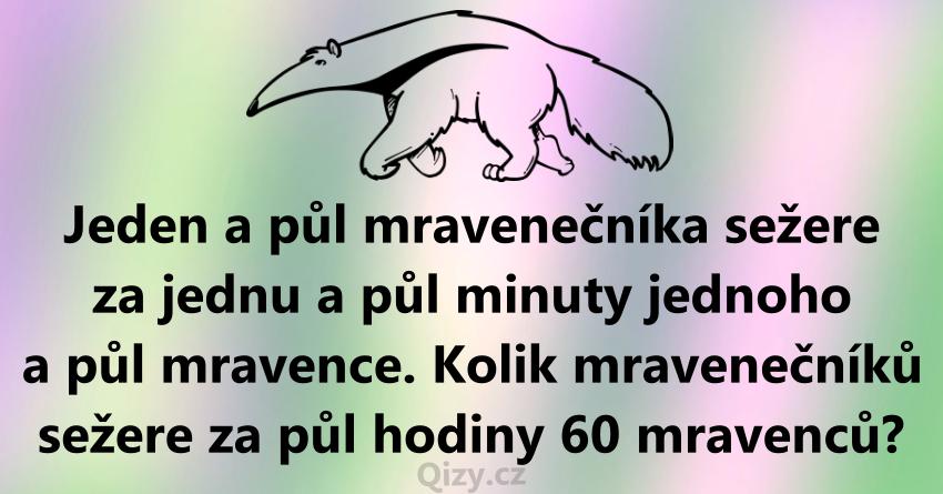 Mravenecnik Hadanka