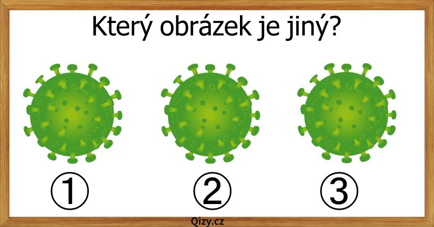 Ktery Obrazek Je Jiny Koronavirus Hadanka