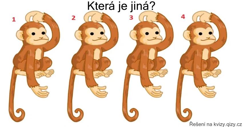 Opičky Najdi Rozdílnou